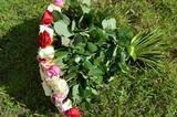 101 местная роза микс 60см